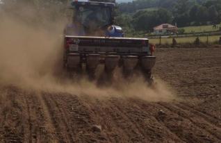 La sequía pone en peligro las 5.400 hectáreas de maíz de las comarcas